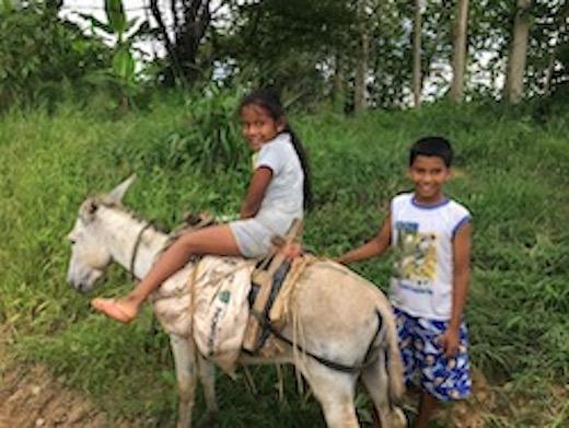 Ein Mädchen sitzt auf einem Esel, daneben steht ein Junge