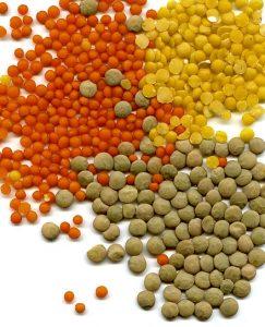 Geschälte rote und gelbe Linsen, grüne Tellerlinsen